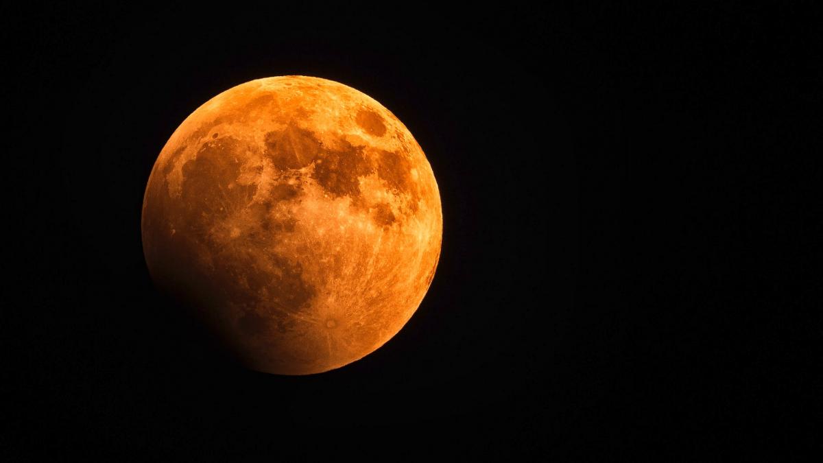 The Blood Moon Series: YA Paranormal Romance